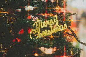 クリスマスは.つば九郎と一緒に!『つば九郎・ドアラ2016クリスマスディナーショー』