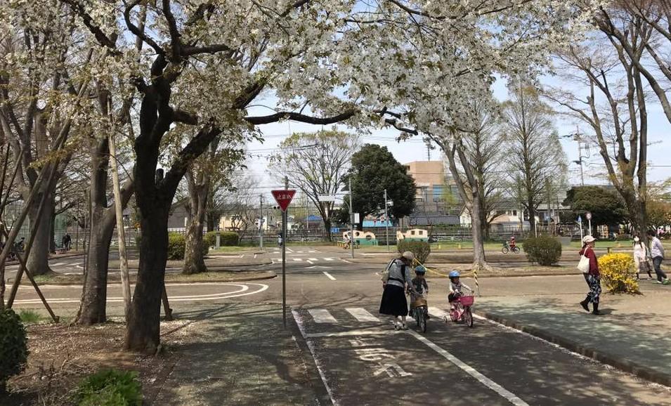 【無料】八王子で自転車の練習をするならここ!東浅川交通公園