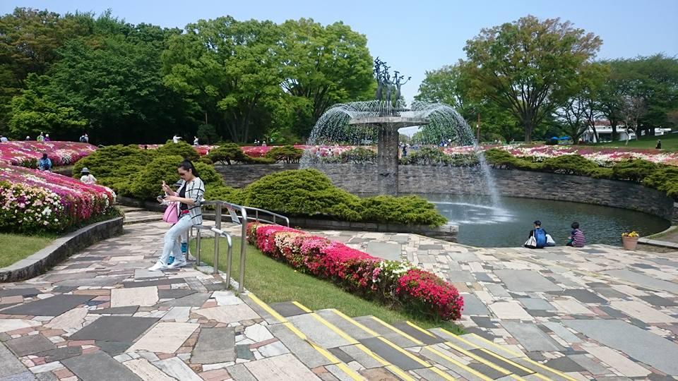 4月29日|無料入園日|昭和記念公園