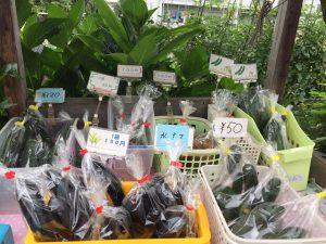 野菜販売所|多摩市和田こうしん塚通り沿い|ヤクルトレディお勧め|