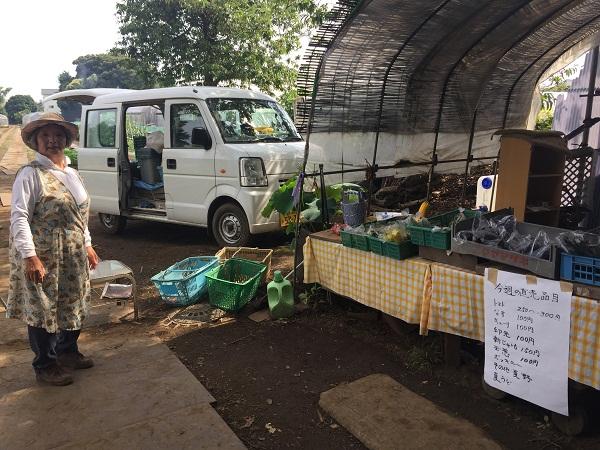 野菜直売所|立川名産うど|ヤクルトレディお勧め