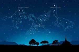 夏休み自由研究にオススメ!夏の星座|スタードーム|多摩市