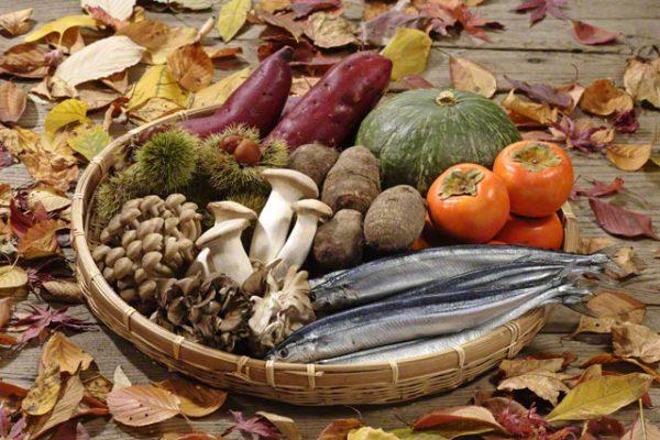 食欲の秋とは・・・|なぜ?食欲増進?|でも・・・ダイエット