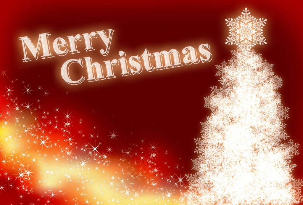 クリスマスにはごちそうを!!