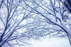 【必見】やってみてわかった雪かきのコツ!!